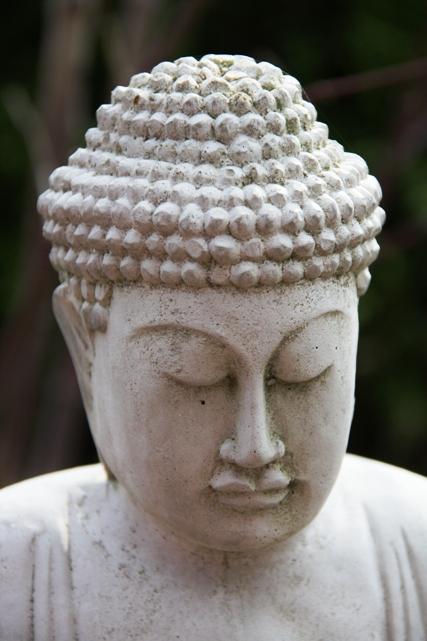 buddha 3 1155668_94395594 rs