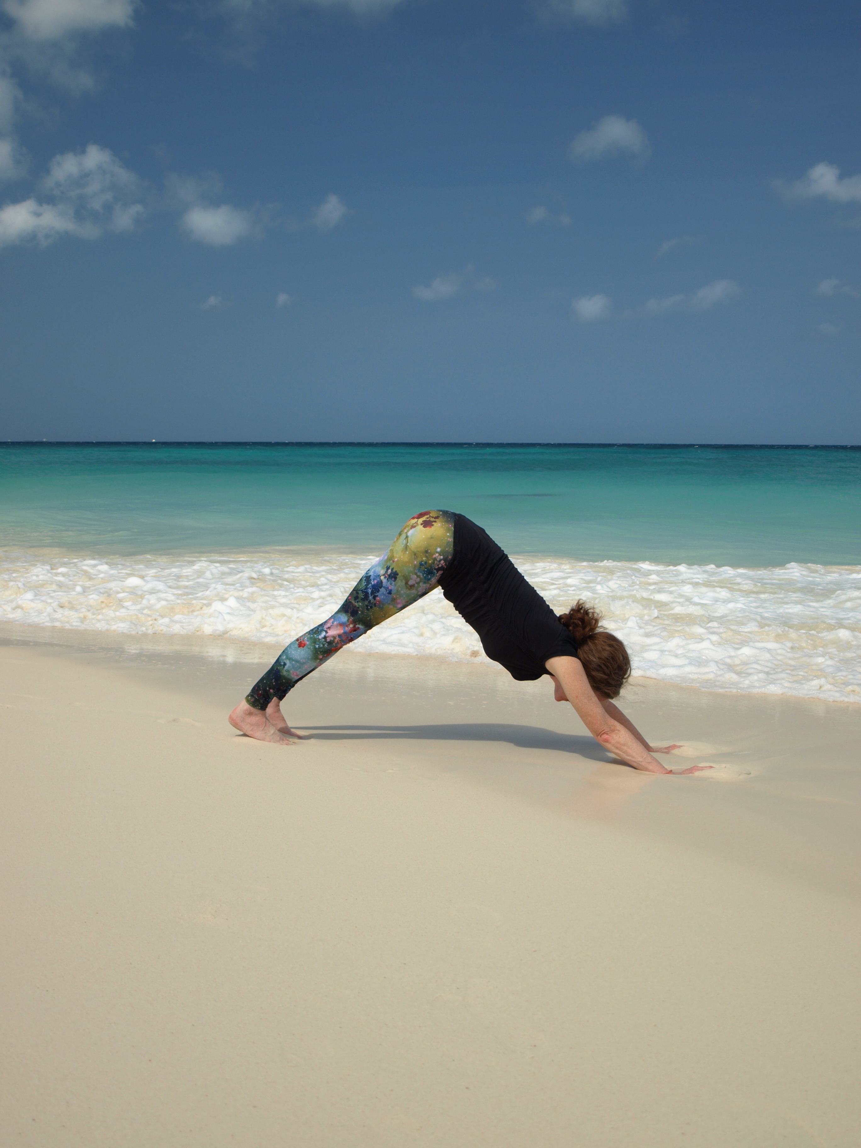 Olympus Digital Camera Nothing Better Than A Daily Downward Dog On The Beach